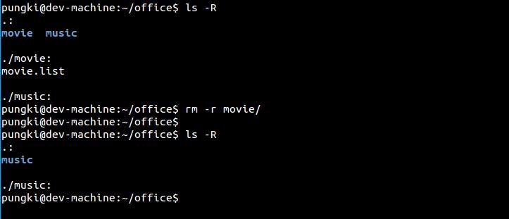 Remove directory